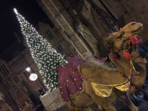 Durham to Host 'Live' Nativity Play with Real Animals and Baby