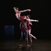 Phoenix Dance Theatre Coming to Durham - Interview