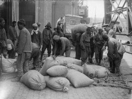 Durham Oriental Museum to Honour Forgotten Chinese WWI Volunteers