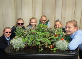 Edible planting school pupils