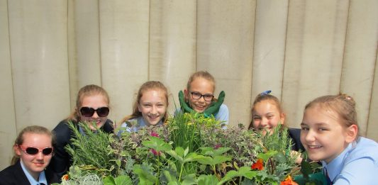 Edible planting school pupils