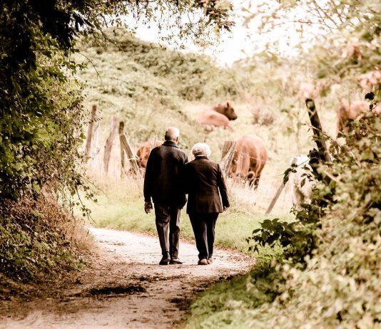 https://pixabay.com/photos/pair-seniors-pensioners-age-2914879/