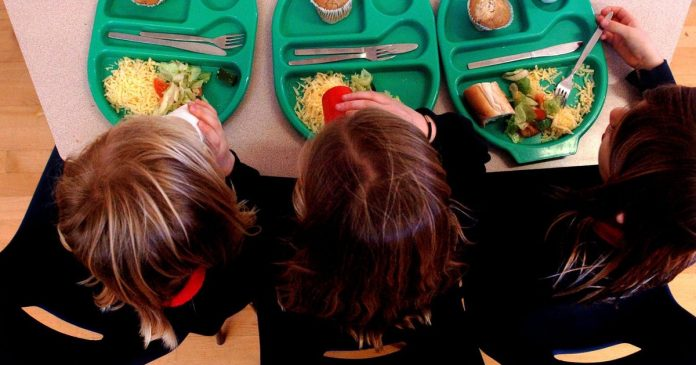 Council Steps In With Meals Support Scheme This Half-Term