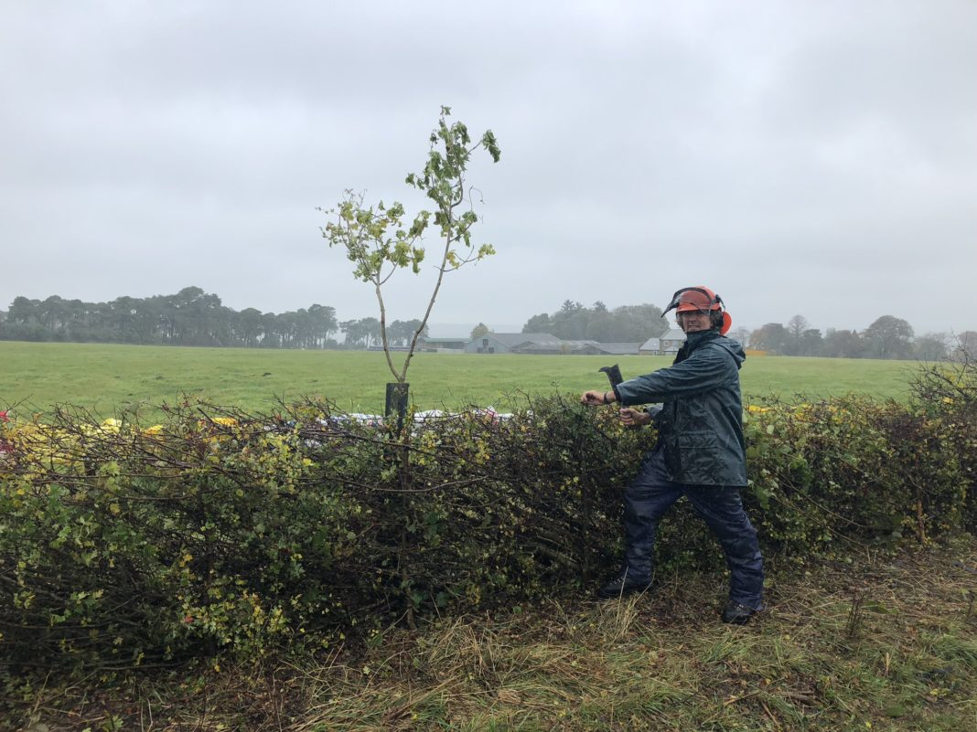 Durham's 22nd Hedgelaying Competition Set To Take Place On October 8th